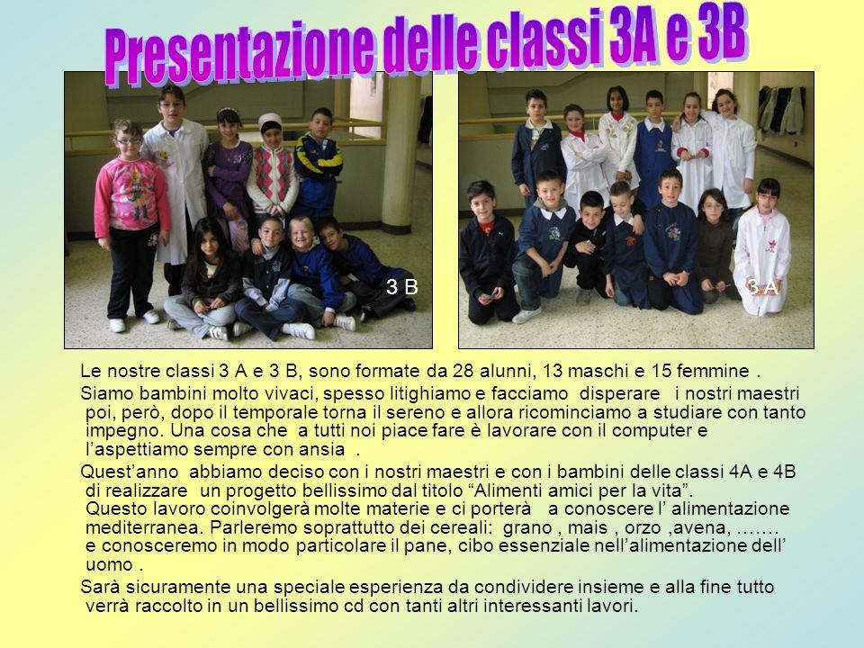 Le nostre classi 3 A e 3 B, sono formate da 28 alunni, 13 maschi e 15 femmine. Siamo bambini molto vivaci, spesso litighiamo e facciamo disperare i no