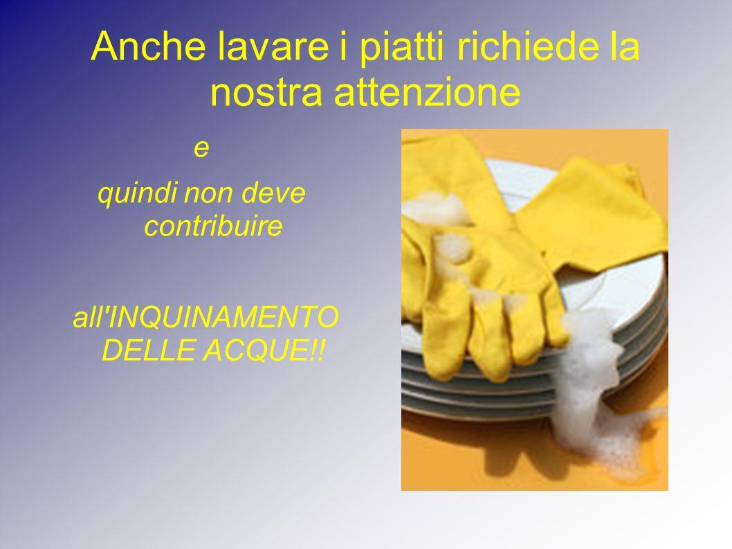Anche lavare i piatti richiede la nostra attenzione e quindi non deve contribuire all'INQUINAMENTO DELLE ACQUE!!