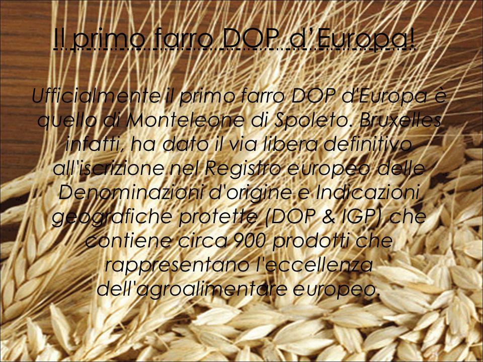 Ufficialmente il primo farro DOP d Europa è quello di Monteleone di Spoleto.