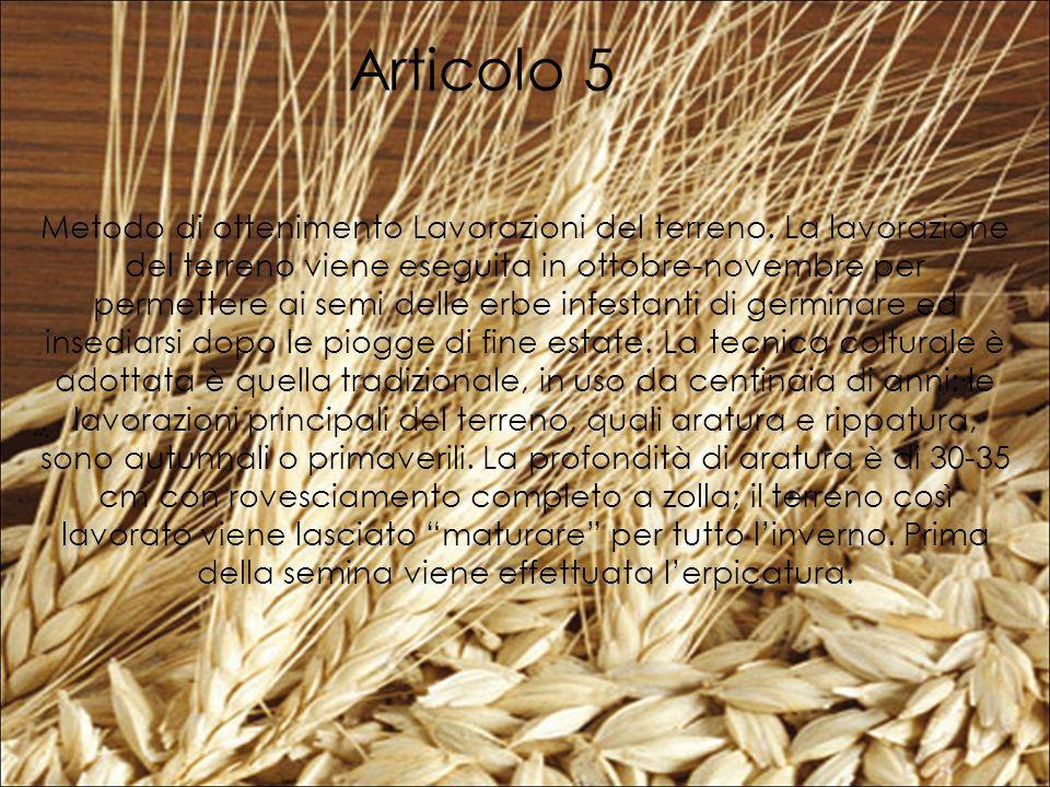 Articolo 5 Metodo di ottenimento Lavorazioni del terreno.