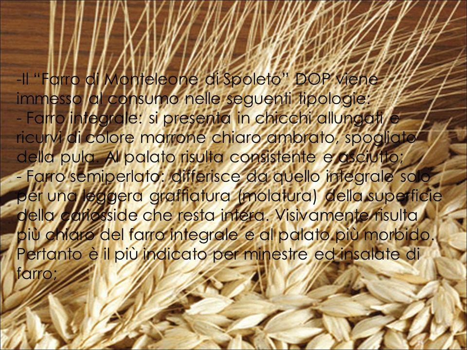 -Il Farro di Monteleone di Spoleto DOP viene immesso al consumo nelle seguenti tipologie: - Farro integrale: si presenta in chicchi allungati e ricurvi di colore marrone chiaro ambrato, spogliato della pula.