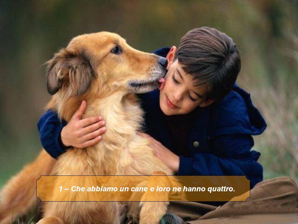 1 – Che abbiamo un cane e loro ne hanno quattro.