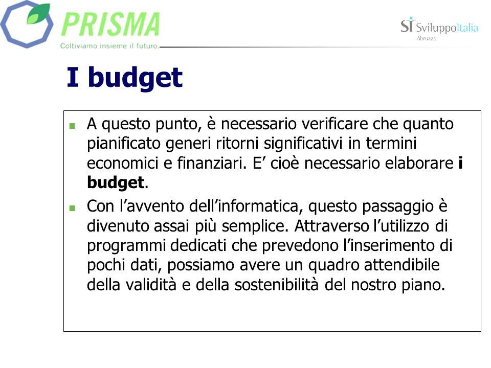 I budget A questo punto, è necessario verificare che quanto pianificato generi ritorni significativi in termini economici e finanziari. E cioè necessa