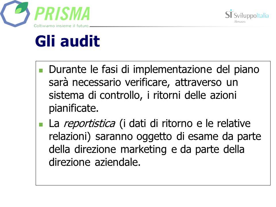 Gli audit Durante le fasi di implementazione del piano sarà necessario verificare, attraverso un sistema di controllo, i ritorni delle azioni pianific