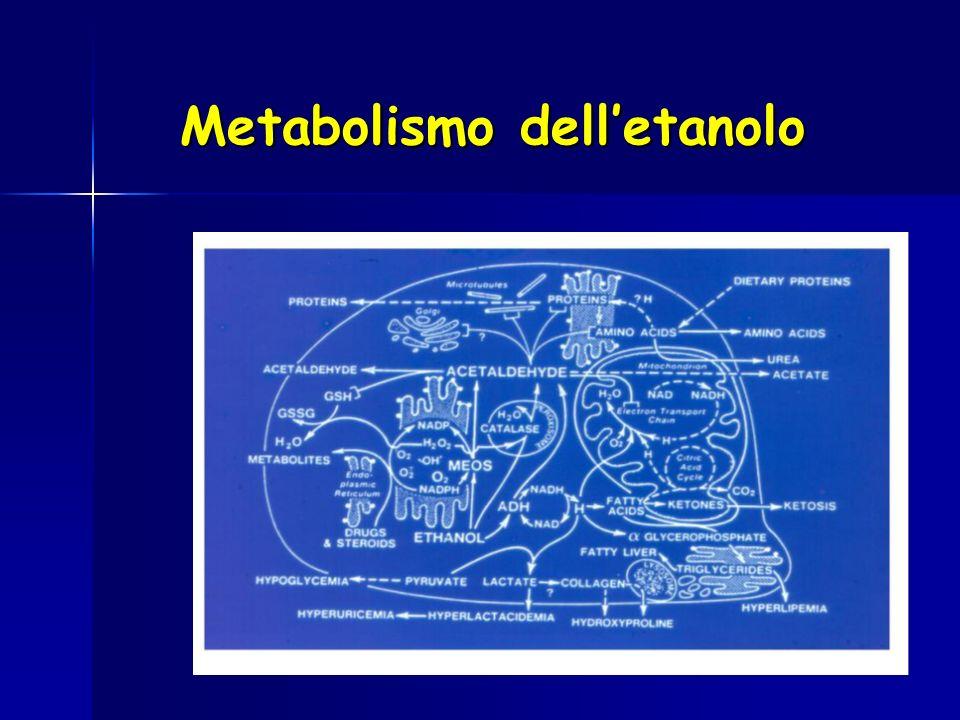 Metabolismo delletanolo