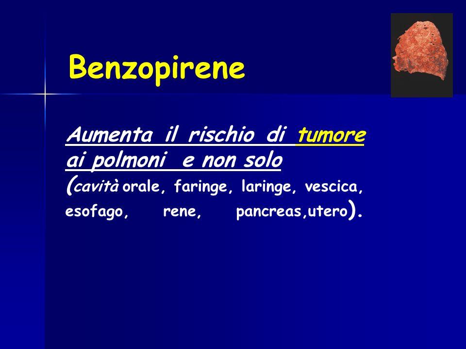 Benzopirene Aumenta il rischio di tumore ai polmoni e non solo ( cavità orale, faringe, laringe, vescica, esofago, rene, pancreas,utero ).