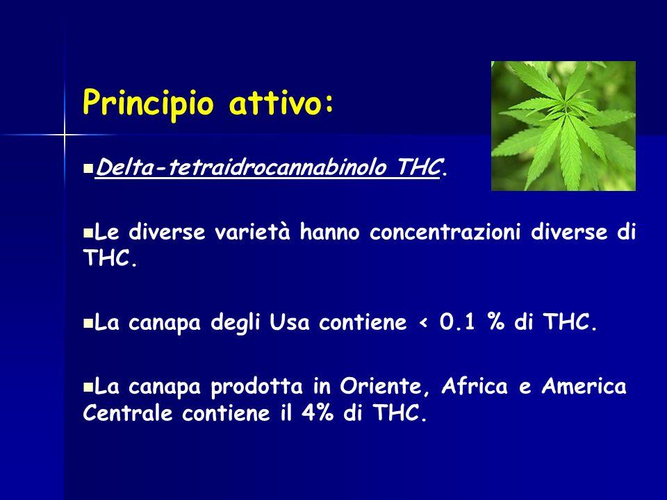 Delta-tetraidrocannabinolo THC. Le diverse varietà hanno concentrazioni diverse di THC. La canapa degli Usa contiene < 0.1 % di THC. La canapa prodott