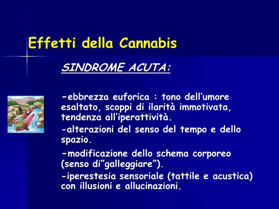 Effetti della Cannabis SINDROME ACUTA: - ebbrezza euforica : tono dellumore esaltato, scoppi di ilarità immotivata, tendenza alliperattività. -alteraz