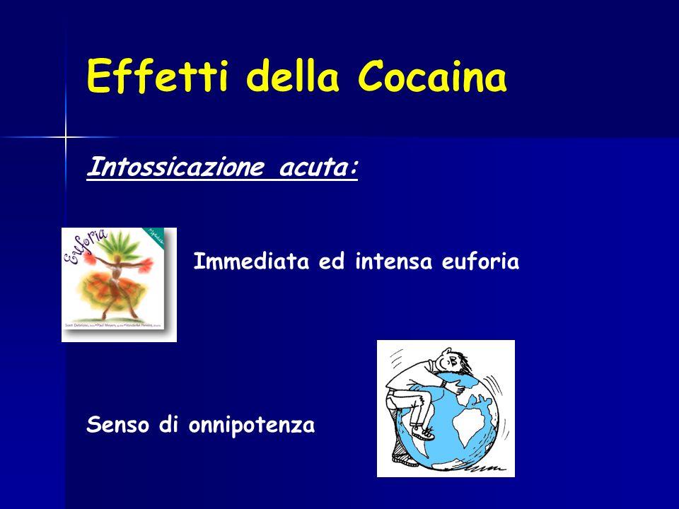 Effetti della Cocaina Intossicazione acuta: Immediata ed intensa euforia Senso di onnipotenza