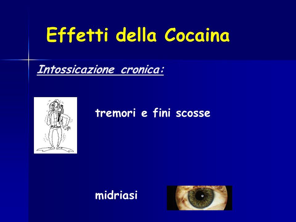 Intossicazione cronica: tremori e fini scosse midriasi Effetti della Cocaina