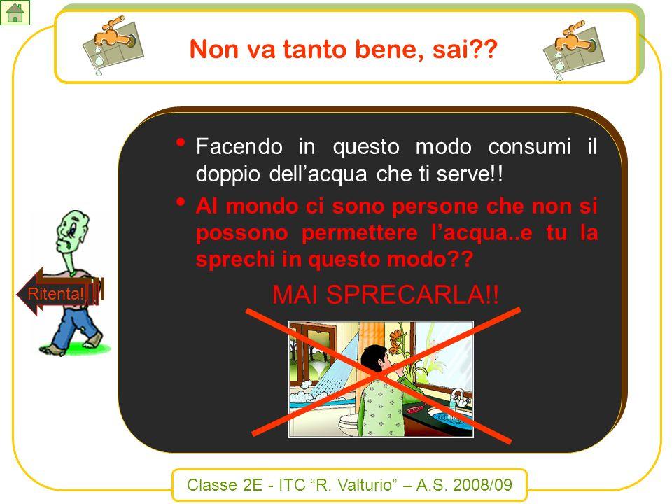 Classe 2E - ITC R. Valturio – A.S. 2008/09 Non va tanto bene, sai?? Facendo in questo modo consumi il doppio dellacqua che ti serve!! Al mondo ci sono