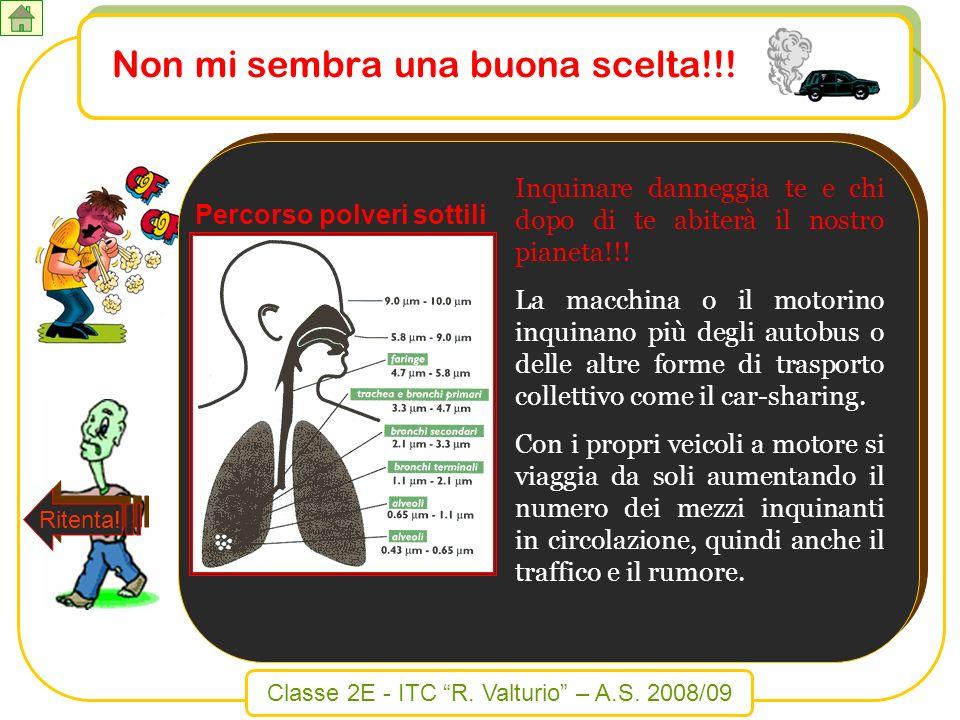 Classe 2E - ITC R. Valturio – A.S. 2008/09 Inquinare danneggia te e chi dopo di te abiterà il nostro pianeta!!! La macchina o il motorino inquinano pi