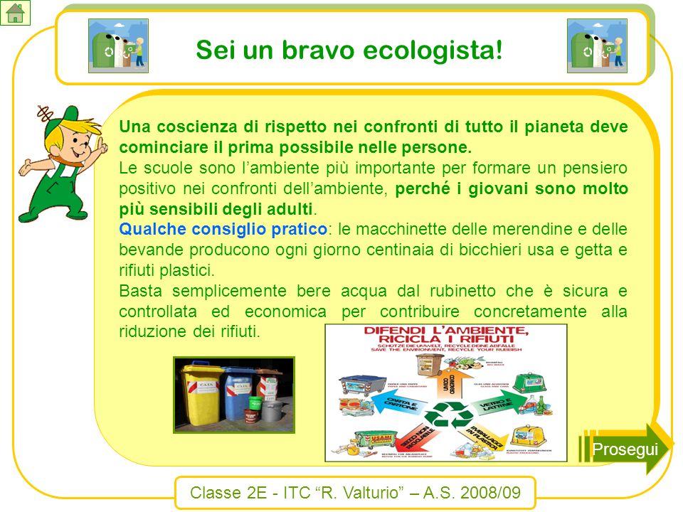 Classe 2E - ITC R. Valturio – A.S. 2008/09 Sei un bravo ecologista! Una coscienza di rispetto nei confronti di tutto il pianeta deve cominciare il pri