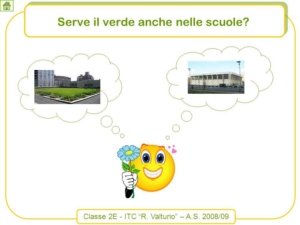 Classe 2E - ITC R. Valturio – A.S. 2008/09 Serve il verde anche nelle scuole?
