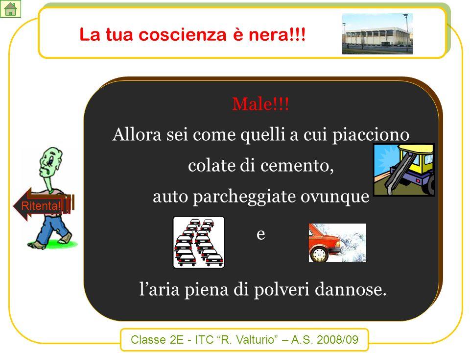 Classe 2E - ITC R. Valturio – A.S. 2008/09 La tua coscienza è nera!!! Male!!! Allora sei come quelli a cui piacciono colate di cemento, auto parcheggi