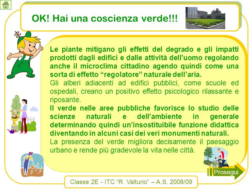 Classe 2E - ITC R. Valturio – A.S. 2008/09 OK! Hai una coscienza verde!!! Le piante mitigano gli effetti del degrado e gli impatti prodotti dagli edif