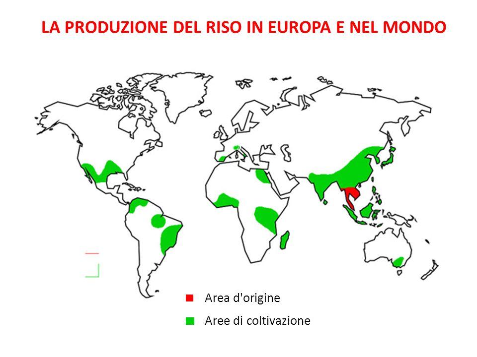 LA PRODUZIONE DEL RISO IN EUROPA E NEL MONDO Area d'origine Aree di coltivazione