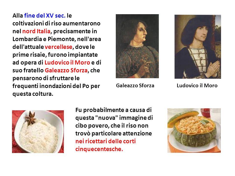Alla fine del XV sec. le coltivazioni di riso aumentarono nel nord Italia, precisamente in Lombardia e Piemonte, nell'area dell'attuale vercellese, do