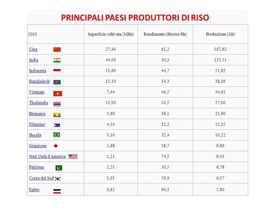 PRINCIPALI PAESI PRODUTTORI DI RISO 2003Superficie coltivata (MHa)Rendimento (Hectos/Ha)Produzione (Mt) Cina 27,4061,2167,62 India 44,0030,3133,51 Ind