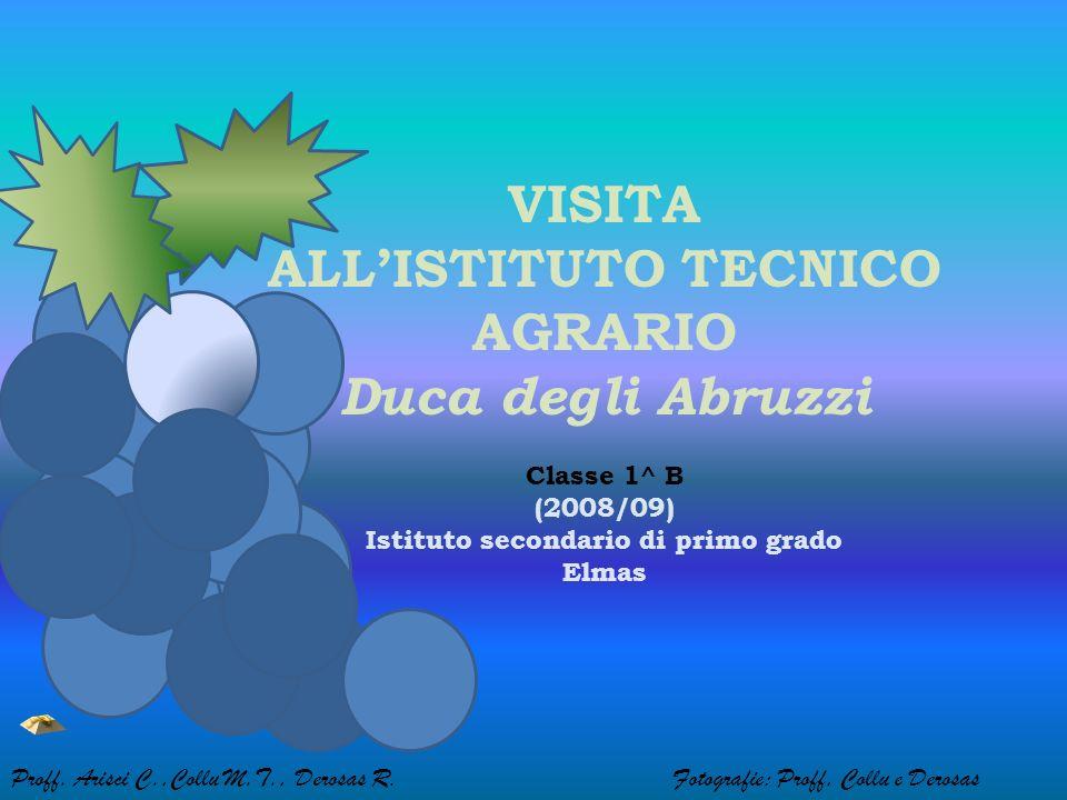 VISITA ALLISTITUTO TECNICO AGRARIO Duca degli Abruzzi Classe 1^ B (2008/09) Istituto secondario di primo grado Elmas Proff.
