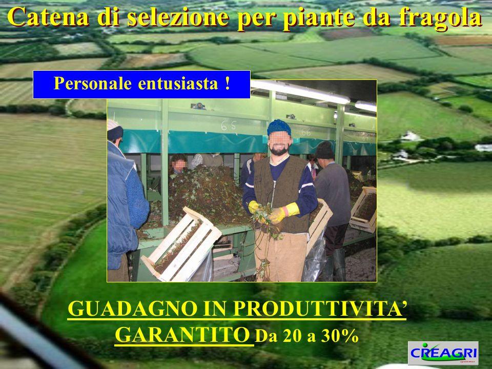 GUADAGNO IN PRODUTTIVITA GARANTITO Da 20 a 30% Personale entusiasta .