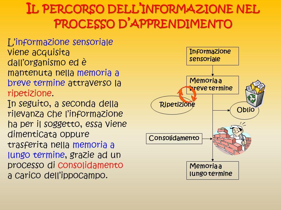 Lapprendimento consiste di due stadi G LI STADI DELL APPRENDIMENTO La memoria a breve termine, cioè la memoria immediata di stimoli appena percepiti,