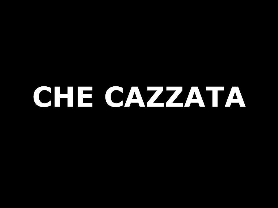 CHE CAZZATA