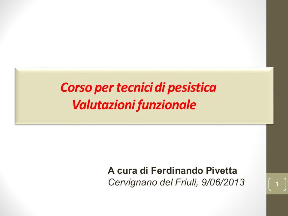 1 Corso per tecnici di pesistica Valutazioni funzionale A cura di Ferdinando Pivetta Cervignano del Friuli, 9/06/2013