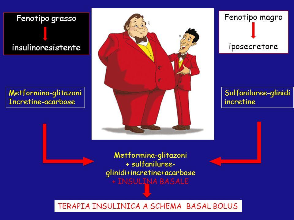 Fenotipo magro iposecretore Fenotipo grasso insulinoresistente Metformina-glitazoni Incretine-acarbose Sulfaniluree-glinidi incretine Metformina-glita