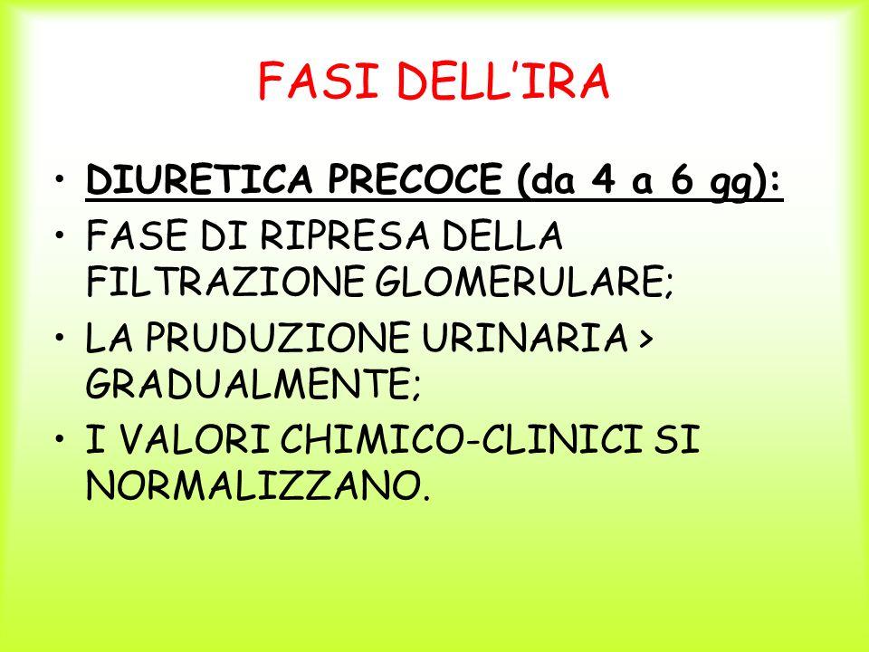 FASI DELLIRA DIURETICA PRECOCE (da 4 a 6 gg): FASE DI RIPRESA DELLA FILTRAZIONE GLOMERULARE; LA PRUDUZIONE URINARIA > GRADUALMENTE; I VALORI CHIMICO-C
