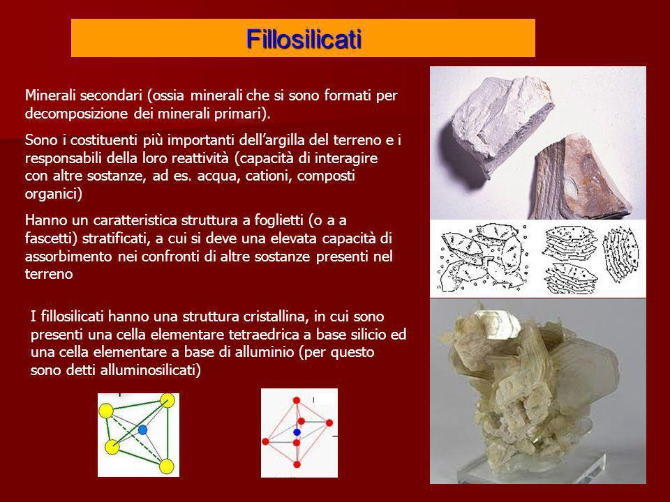 Fillosilicati Minerali secondari (ossia minerali che si sono formati per decomposizione dei minerali primari). Sono i costituenti più importanti della