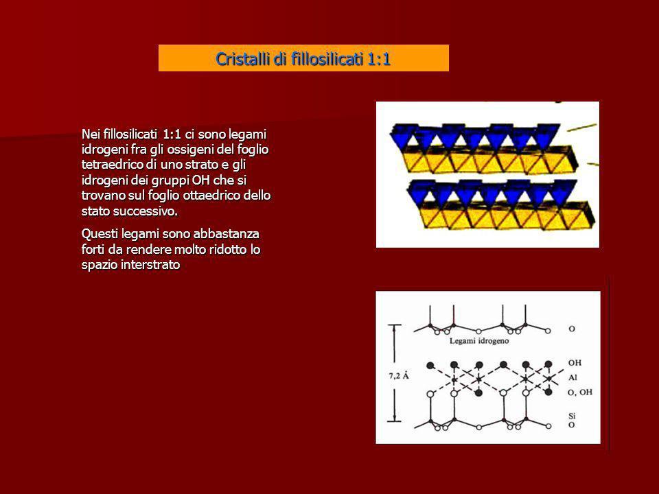 Cristalli di fillosilicati 1:1 Nei fillosilicati 1:1 ci sono legami idrogeni fra gli ossigeni del foglio tetraedrico di uno strato e gli idrogeni dei