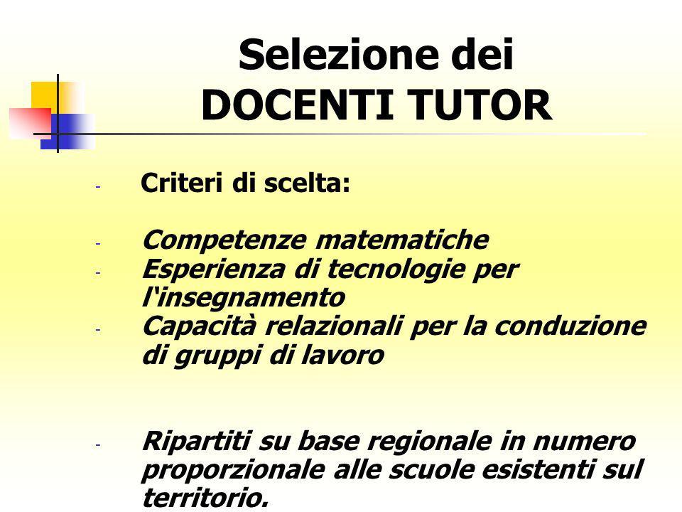 Selezione dei DOCENTI TUTOR - Criteri di scelta: - Competenze matematiche - Esperienza di tecnologie per linsegnamento - Capacità relazionali per la c