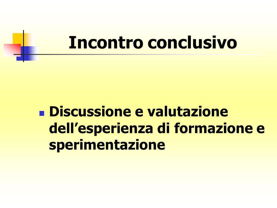 Incontro conclusivo Discussione e valutazione dellesperienza di formazione e sperimentazione