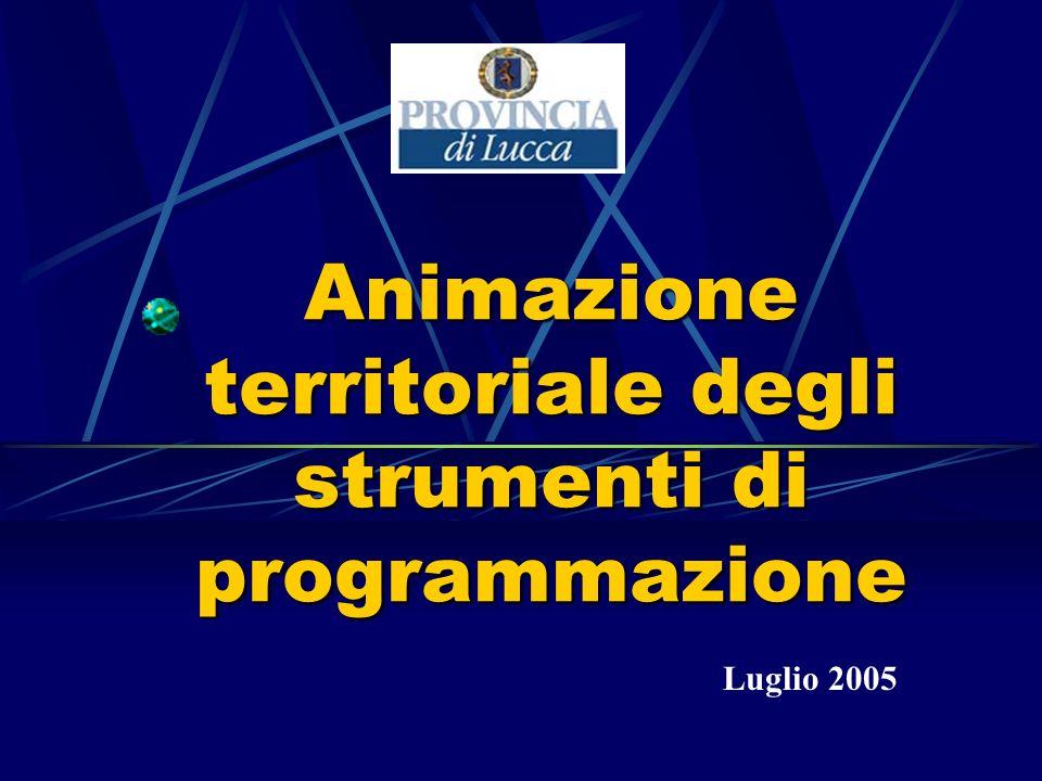 Animazione territoriale degli strumenti di programmazione Luglio 2005