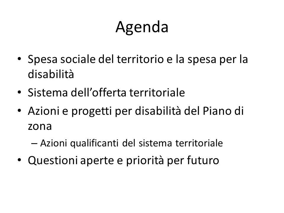 Agenda Spesa sociale del territorio e la spesa per la disabilità Sistema dellofferta territoriale Azioni e progetti per disabilità del Piano di zona – Azioni qualificanti del sistema territoriale Questioni aperte e priorità per futuro