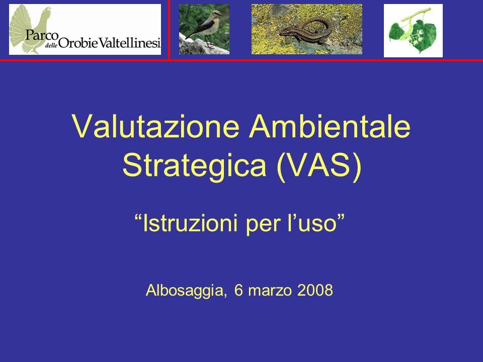 Valutazione Ambientale Strategica (VAS) Istruzioni per luso Albosaggia, 6 marzo 2008