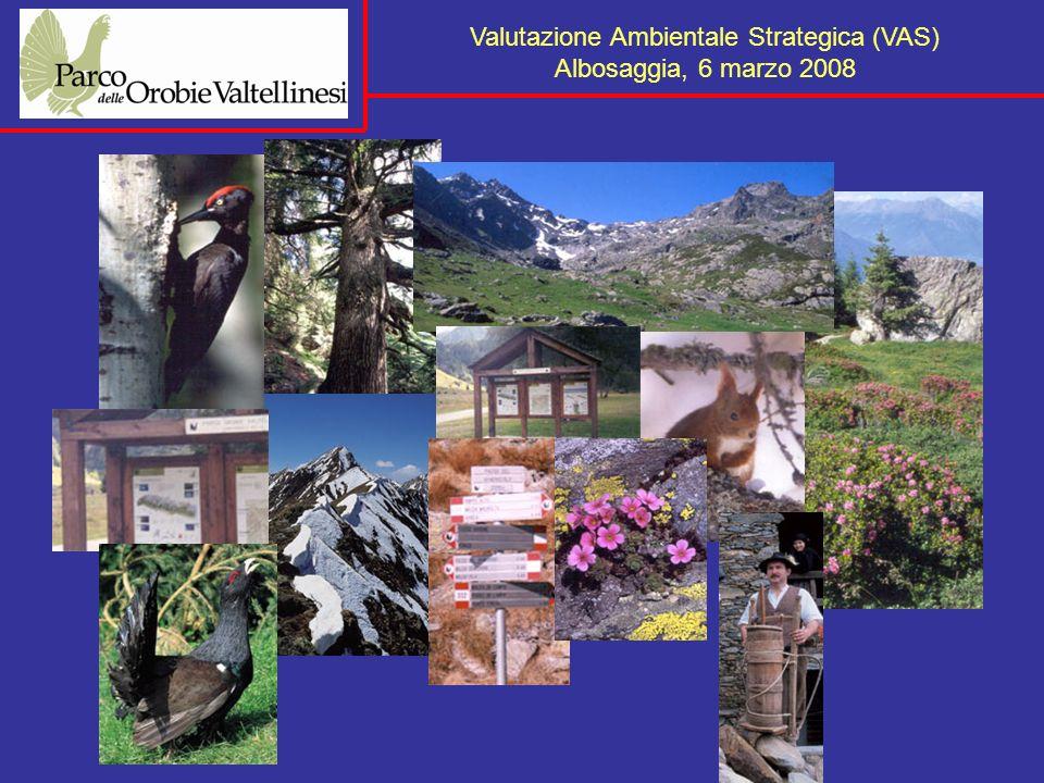 Valutazione Ambientale Strategica (VAS) Albosaggia, 6 marzo 2008 Fase b) enti ed associazioni territorialmente interessati Regione Provincia Comunità Montane Comuni confinanti Associazioni, organizzazioni o gruppi interessati alliter decisionale