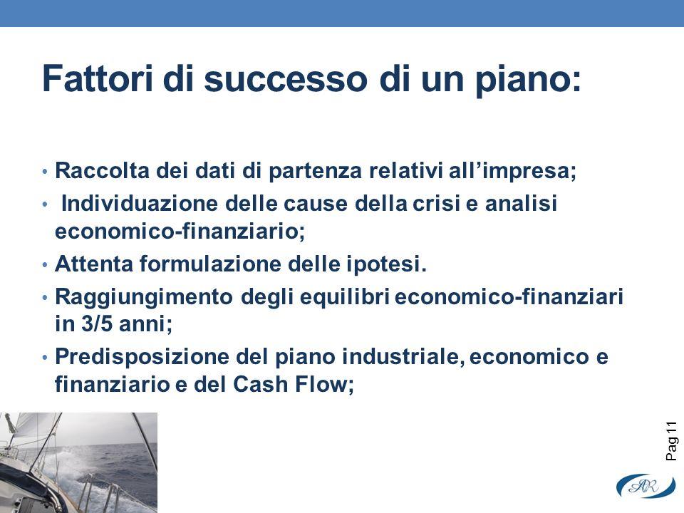 Fattori di successo di un piano: Raccolta dei dati di partenza relativi allimpresa; Individuazione delle cause della crisi e analisi economico-finanzi