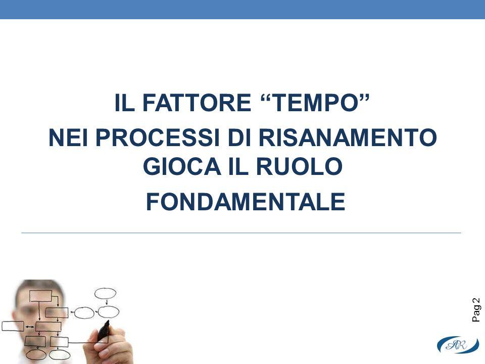 IL FATTORE TEMPO NEI PROCESSI DI RISANAMENTO GIOCA IL RUOLO FONDAMENTALE Pag 2