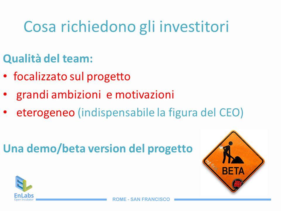 Cosa richiedono gli investitori Qualità del team: focalizzato sul progetto grandi ambizioni e motivazioni eterogeneo (indispensabile la figura del CEO