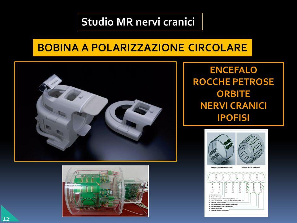 BOBINA A POLARIZZAZIONE CIRCOLARE ENCEFALO ROCCHE PETROSE ORBITE NERVI CRANICI IPOFISI Studio MR nervi cranici 12