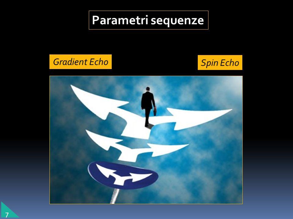 Parametri sequenze Gradient Echo Spin Echo 7