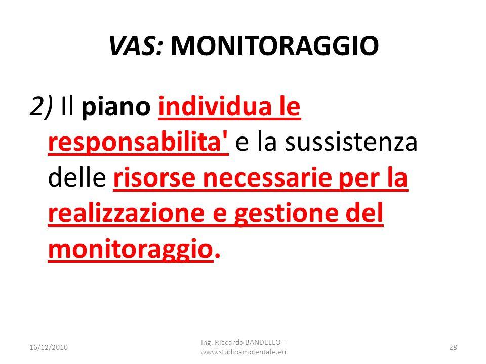 VAS: MONITORAGGIO 2) Il piano individua le responsabilita' e la sussistenza delle risorse necessarie per la realizzazione e gestione del monitoraggio.