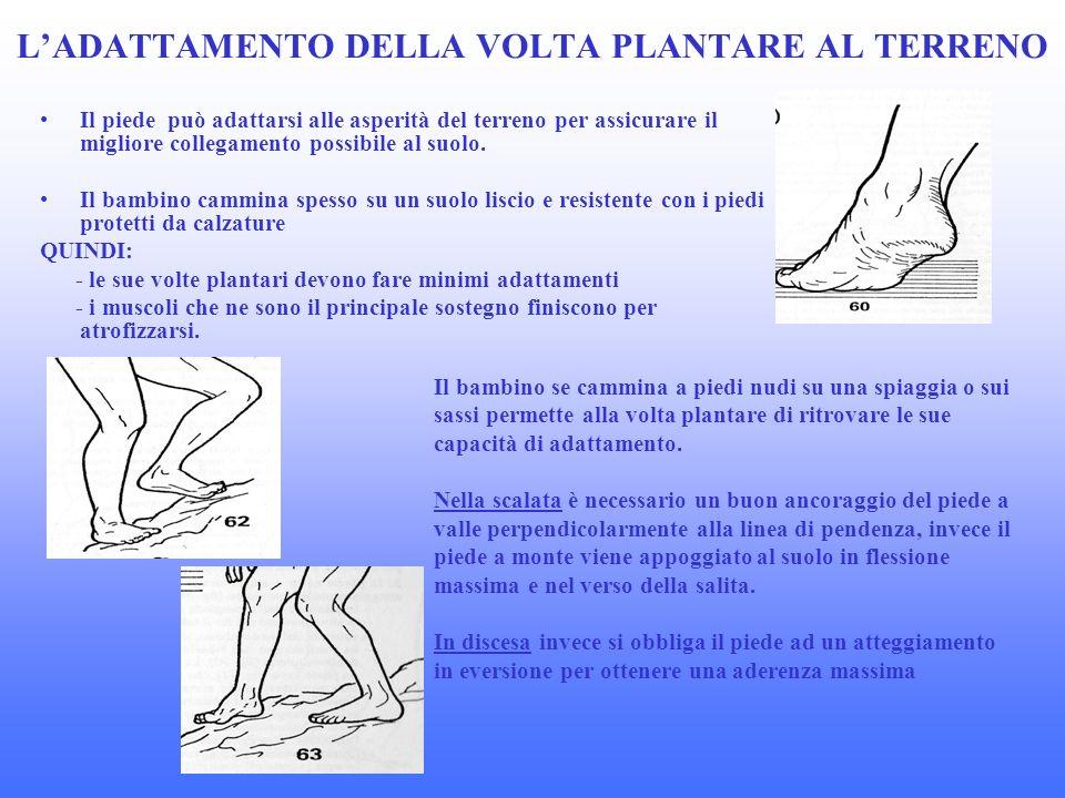 LADATTAMENTO DELLA VOLTA PLANTARE AL TERRENO Il piede può adattarsi alle asperità del terreno per assicurare il migliore collegamento possibile al suolo.