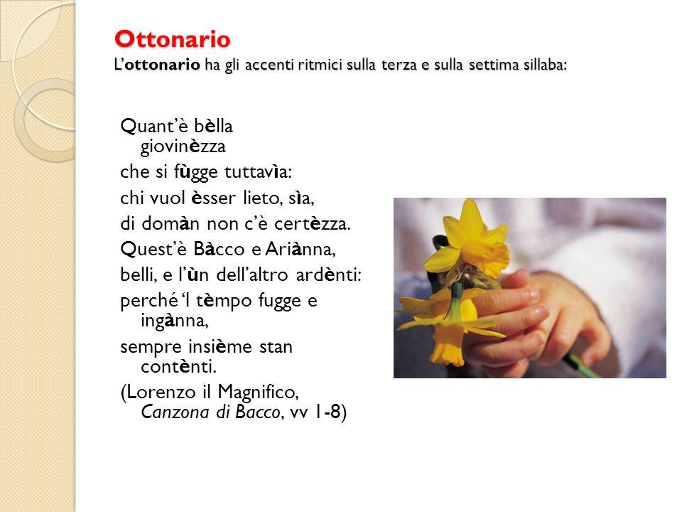 Ottonario Lottonario ha gli accenti ritmici sulla terza e sulla settima sillaba: Quantè bèlla giovinèzza che si fùgge tuttavìa: chi vuol èsser lieto, sìa, di domàn non cè certèzza.