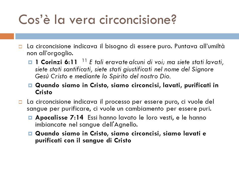 Cosè la vera circoncisione? La circoncisione indicava il bisogno di essere puro. Puntava allumiltà non allorgoglio. 1 Corinzi 6:11 11 E tali eravate a