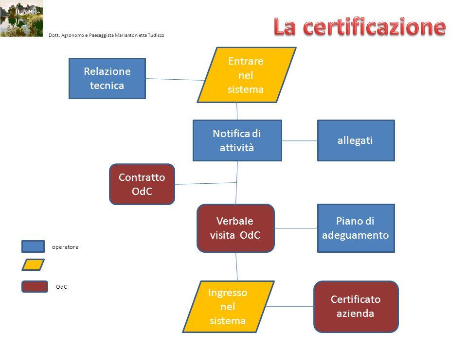 Dott. Agronomo e Paesaggista Mariantonietta Tudisco Notifica di attività allegati Piano di adeguamento Relazione tecnica Entrare nel sistema Ingresso