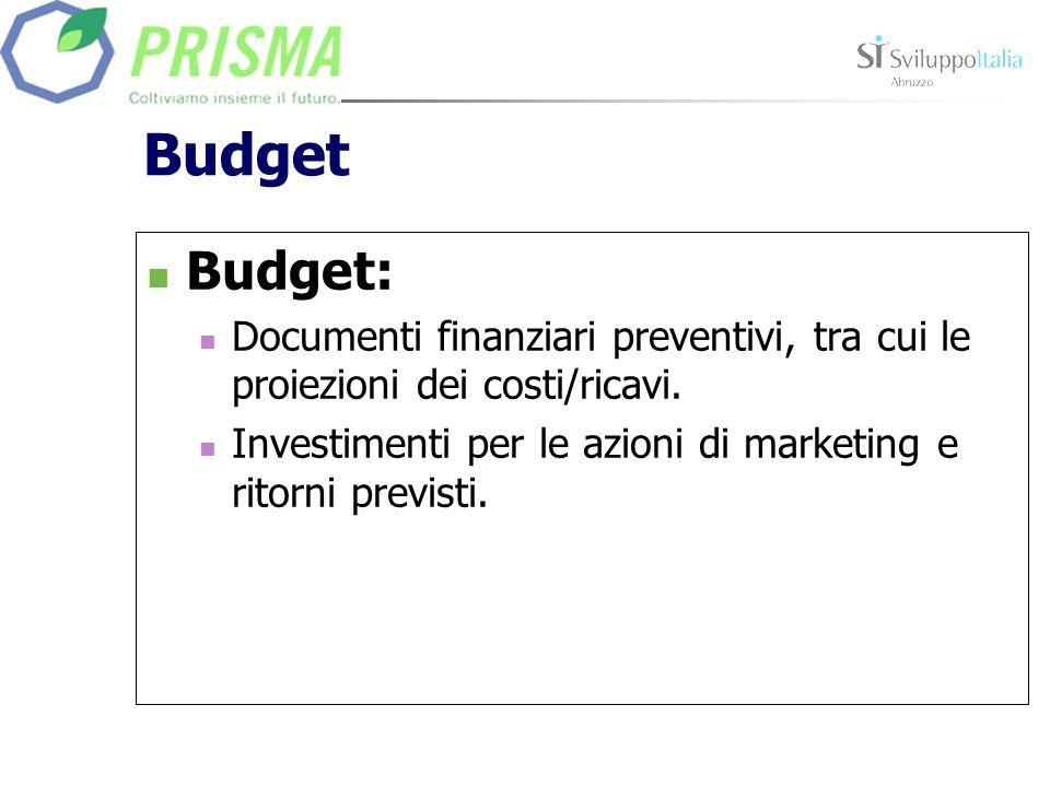 Budget Budget: Documenti finanziari preventivi, tra cui le proiezioni dei costi/ricavi. Investimenti per le azioni di marketing e ritorni previsti.