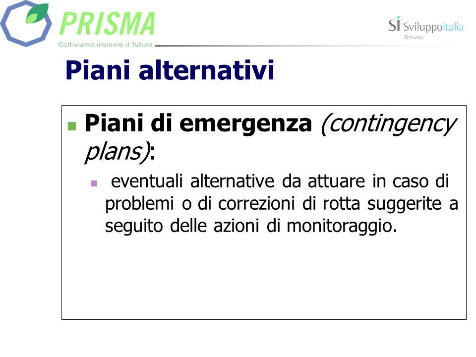 Piani alternativi Piani di emergenza (contingency plans): eventuali alternative da attuare in caso di problemi o di correzioni di rotta suggerite a se